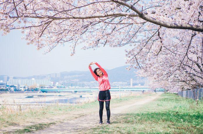 気分リフレッシュ 日本の四季 桜 ウォーキング