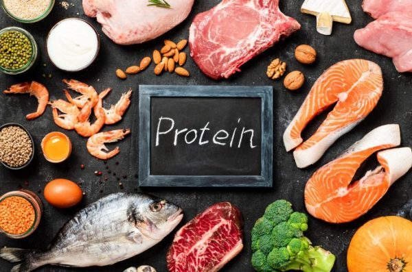 タンパク質をしっかり摂って