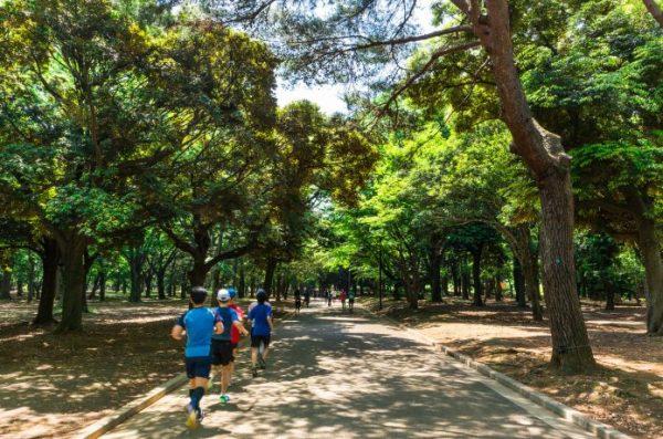 代々木公園 夏 ランニング