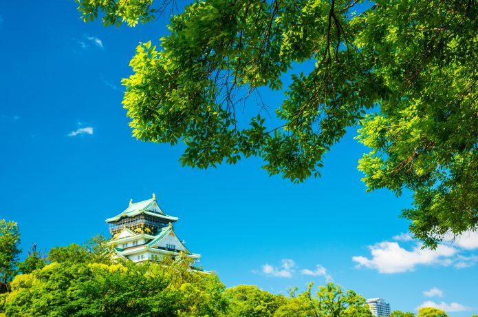 夏の大阪城 新緑