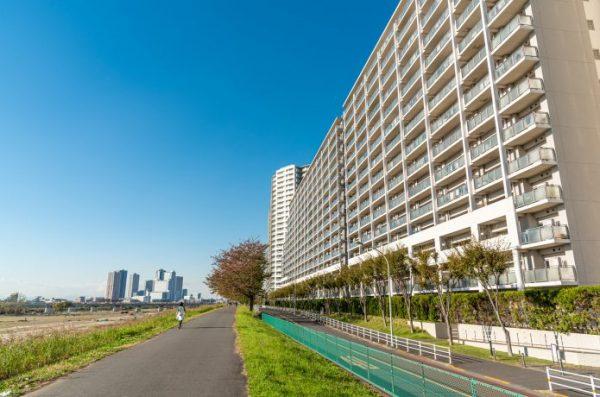 多摩川 ランニングコース