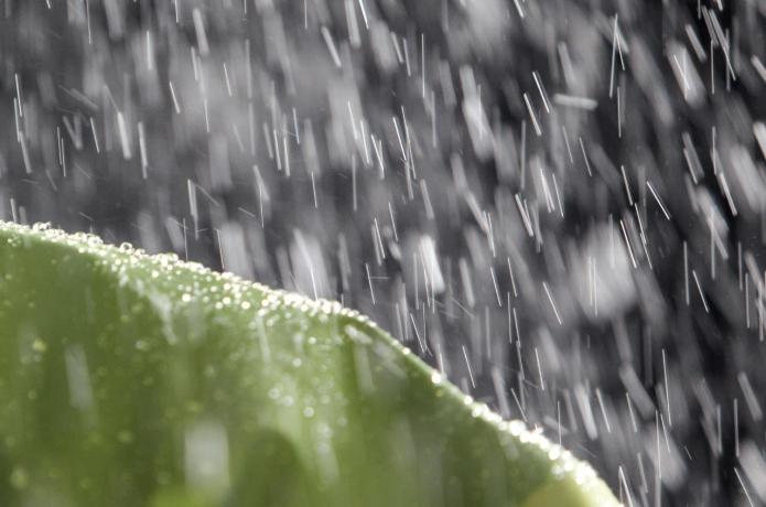 レインウェアに雨が打ち付ける様子