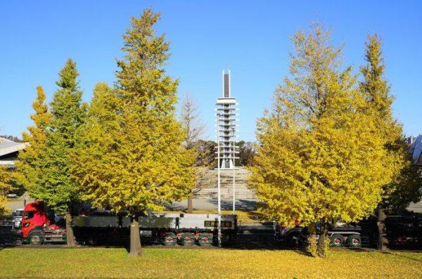 駒沢公園 風景