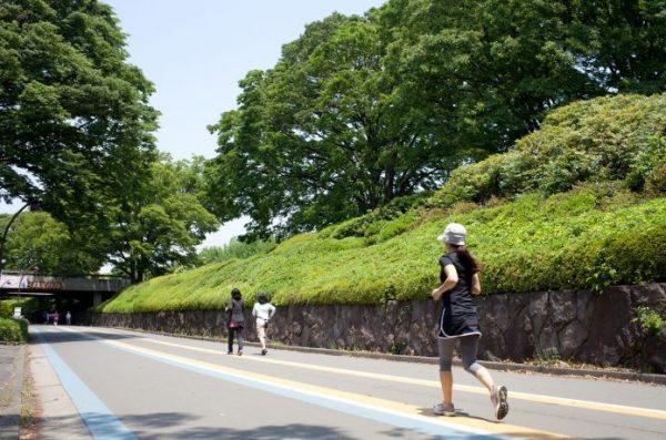 駒沢公園 ランナー
